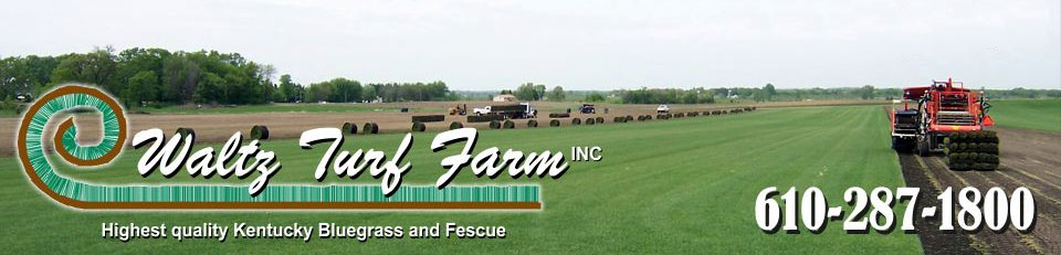 Waltz Turf Farm